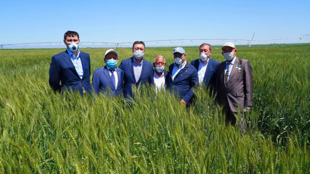 ҚР Премьер-Министрі А. Мамин Түркістан облысы Мақтаарал ауданындағы қалпына келтіру жұмыстарын тексерді